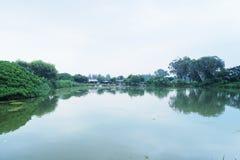 Uspokajać jezioro Obrazy Royalty Free