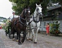 Usseln Tyskland - Juli 30th, 2018 - vagn som dras av en vit och mörk häst på en ståta arkivbilder
