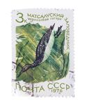 USSR - CIRCA 1976: A stamp printed in the  shows bird Cherno Stock Photography