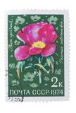 USSR - CIRCA 1974: A stamp printed in the , shows  flora li Stock Image