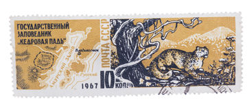 USSR - CIRCA 1967: A stamp printed in , shows map of Cedar P Stock Photos