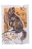 USSR - CIRCA 1967: A stamp printed in shows series of wild stock images