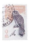USSR - OKOŁO 1965: znaczek drukujący przedstawieniami kestrel, serie Obraz Stock