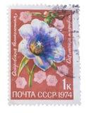 USSR - OKOŁO 1974: Znaczek drukujący w, przedstawienie flor li Zdjęcia Stock
