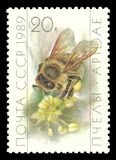 Beekeeping, Honey Bee, Apis mellifica. USSR - stamp printed 1989, Memorable multicolor edition offset printing, Topic Fauna - Flowers and Bees, Series Beekeeping stock photos