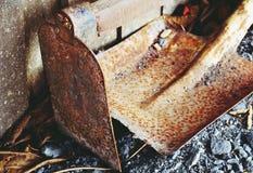 Ust sulla vecchie zappa e pala immagine stock