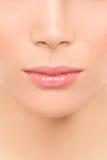 Usta i nosa zbliżenie - piękno twarzy kobieta Obraz Stock