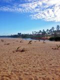 Usta Jacuibe rzeka na wybrzeżu Bahia, Obraz Royalty Free