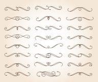 Ustaleni eleganccy dekoracyjni ślimacznica elementy wektor również zwrócić corel ilustracji wektora brąz royalty ilustracja