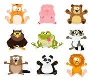 Ustaleni różni zwierzęta Obraz Royalty Free