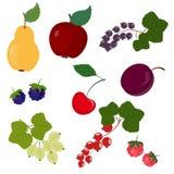 ustalenie owoców Zdjęcie Royalty Free