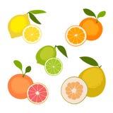 ustalenie owoców Fotografia Royalty Free