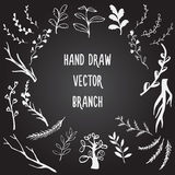 Ustalona ręka Rysująca gałąź Obraz Royalty Free