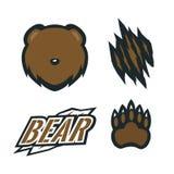 Ustalonego niedźwiadkowego grizzly teksta wektorowy szablon ilustracji