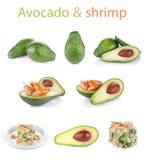 Ustalony świeży avocado z garnelą obrazy stock