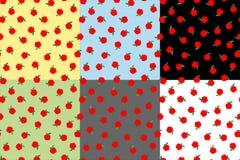 Ustalony bezszwowy tło z jabłkami Jesieni sezonowy tło, szkoła jabłko wzory dla projekta ilustracji