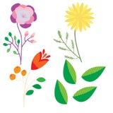 Ustalony doodle rysujący kwiaty odizolowywający na białym tle dla projekta Obraz Stock