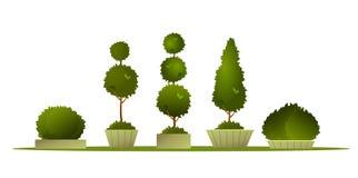 Ustalony ogrodowy topiary ilustracja wektor