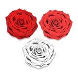 Ustalony realistyczny nakreślenie róże Eleganccy kwiaty tworzyć projekt Zdjęcia Royalty Free