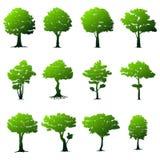 ustawić drzewa Zdjęcia Stock