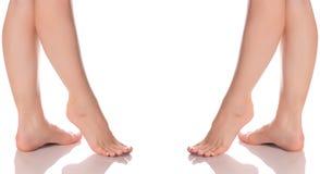 Ustawia żeńską cieki nóg piętę stopa od różnych kierunek medycyny piękna zdrowie Obrazy Stock