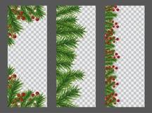 Ustawia bożych narodzeń, nowego roku pionowo sztandar z i granicą choinek gałąź i uświęcone jagody na przejrzystym ilustracja wektor