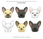 Ustawia celu nakreślenia francuskiego buldoga różnego kolor pies jest portret Fotografia Stock