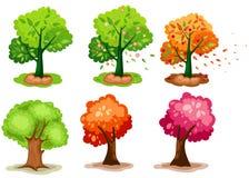 ustawia drzewa Fotografia Stock