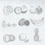 ustawiać egzotyczne owoc ilustracja wektor