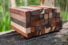 Ustawia Egzotycznego drewnianego reala dla pustego miejsca pi?ra obrazy stock