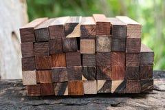 Ustawia Egzotycznego drewnianego reala dla pustego miejsca pi?ra fotografia stock