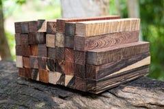 Ustawia Egzotycznego drewnianego reala dla pustego miejsca pi?ra obraz royalty free