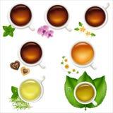 ustawia herbaty Fotografia Royalty Free