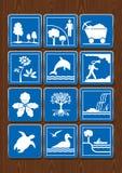 Ustawia ikony ochraniający teren, kopalnictwo, kwiat, delfin, geologia, orchidea, mangrowe, siklawa, żółw, seabirds, żeglowna rze Zdjęcia Royalty Free
