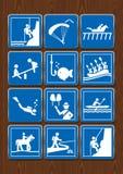 Ustawia ikony paragliding, pikowanie, hipodrom, boisko, horseback jazda, flisactwo, wycieczkuje Ikony w błękitnym kolorze na drew Zdjęcie Royalty Free