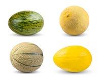 Ustawia kolekcję melon Kantalup, Galia, Piel De Sapo i miodunka, pojedynczy białe tło zdjęcia royalty free