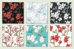 Ustawia kolekcję z bezszwowymi wzorami drzewni kwitn?cy kwiaty Wiosny kwiecista tekstura R?ka rysuj?cy botaniczny wektor ilustracji