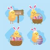 Ustawia kurczątka z kosza i Easter jajek dekoracją ilustracji