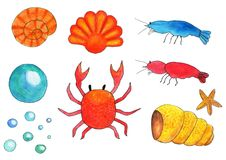 Ustawia morskiego akwarium, garnela, skorupy, kraby, bąble Obraz Stock