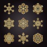 Ustawia płatek śniegu złoto, plemienny rocznika tło z medalionem ilustracji