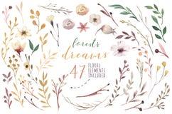 Ustawia rocznik akwareli elementy kwiatów, ogrodowych i dzikich kwiaty, liście, gałąź kwiaty, ilustracja odizolowywająca royalty ilustracja