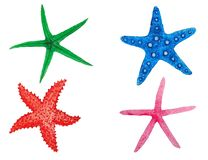 Ustawia rozgwiazdy akwarelę ilustracji