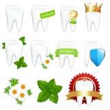 ustawia tooths Obrazy Stock
