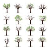 Ustawia wiosen drzewa również zwrócić corel ilustracji wektora ilustracji