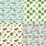 Ustawia z cztery bezszwowymi wzorami z akwarela tropikalnymi kwiatami Fotografia Royalty Free