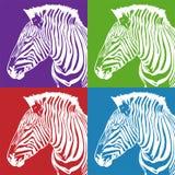 ustawia zebry royalty ilustracja