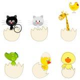ustawiający Easter śliczni jajka ilustracji