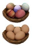 ustawiający Easter dekorujący jajka Zdjęcia Stock