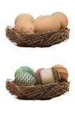 ustawiający Easter dekorujący jajka Obraz Royalty Free