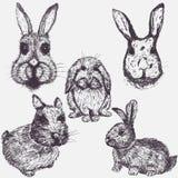ustawiający Easter króliki Ręka rysujący nakreślenie elementy royalty ilustracja